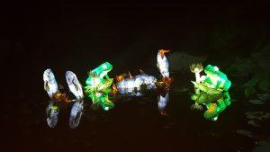 lanternes grenouilles