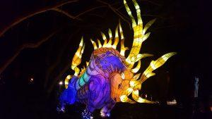 jardins de lumière taureau