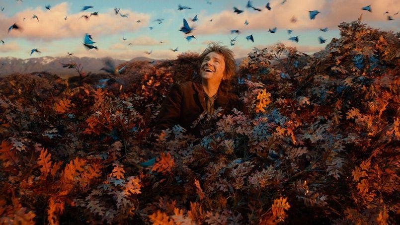 le ptit hobbit caché dans son arbre